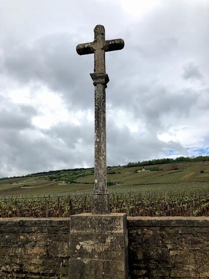 ワイン旅2 ロマネ・コンティの畑